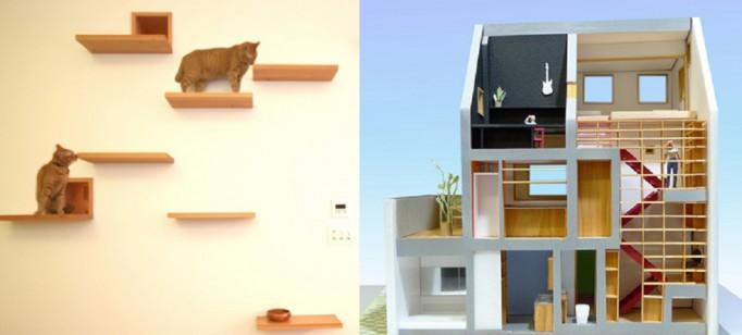 """""""The Cat House"""" um sonho de casa para os gatos"""