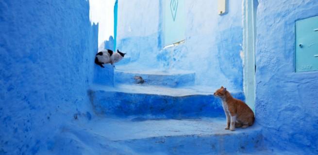 """""""Em Marrocos, uma das cidades mais características, Chefchaouen."""" Top 10 das Ruas Mais Bonitas do Mundo Top 10 das Ruas Mais Bonitas do Mundo Marrocos2 655x320"""