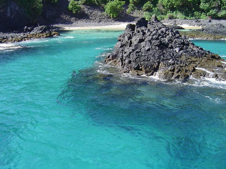 """""""Baia dos porcos permite ver a fauna aquatica pura e selvagem""""  Lifestyle: 10 melhores praias do Brasil baiadosporcos"""