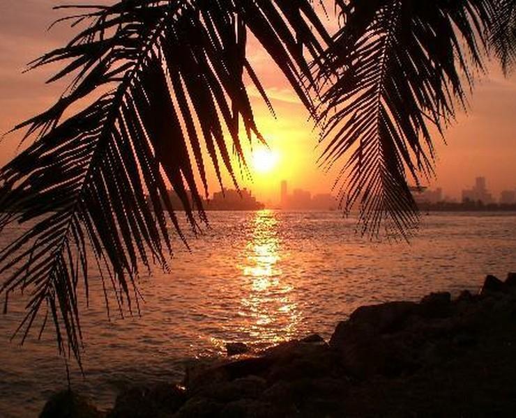 Maison & Objet Americas – como vai ser?!  Maison & Objet Americas – como vai ser?! miami beach