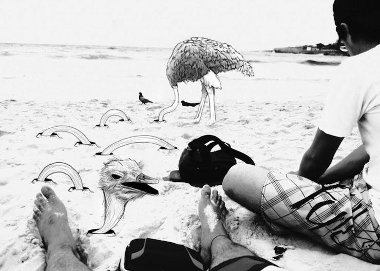 fotografias-ilustracoes-cidade-maravilhosa-rio-de-janeiro-continua-lindo-avestruz-1024x730  Fotografias, Ilustrações e a Cidade Maravilhosa: o Rio de Janeiro continua lindo!  fotografias ilustracoes cidade maravilhosa rio de janeiro continua lindo avestruz