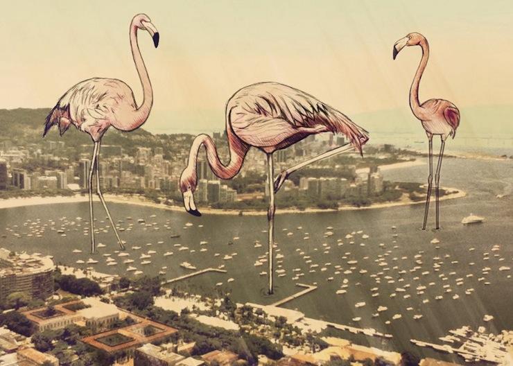 fotografias-ilustracoes-cidade-maravilhosa-rio-de-janeiro-continua-lindo-flamingos-1024x730  Fotografias, Ilustrações e a Cidade Maravilhosa: o Rio de Janeiro continua lindo!  fotografias ilustracoes cidade maravilhosa rio de janeiro continua lindo flamingos