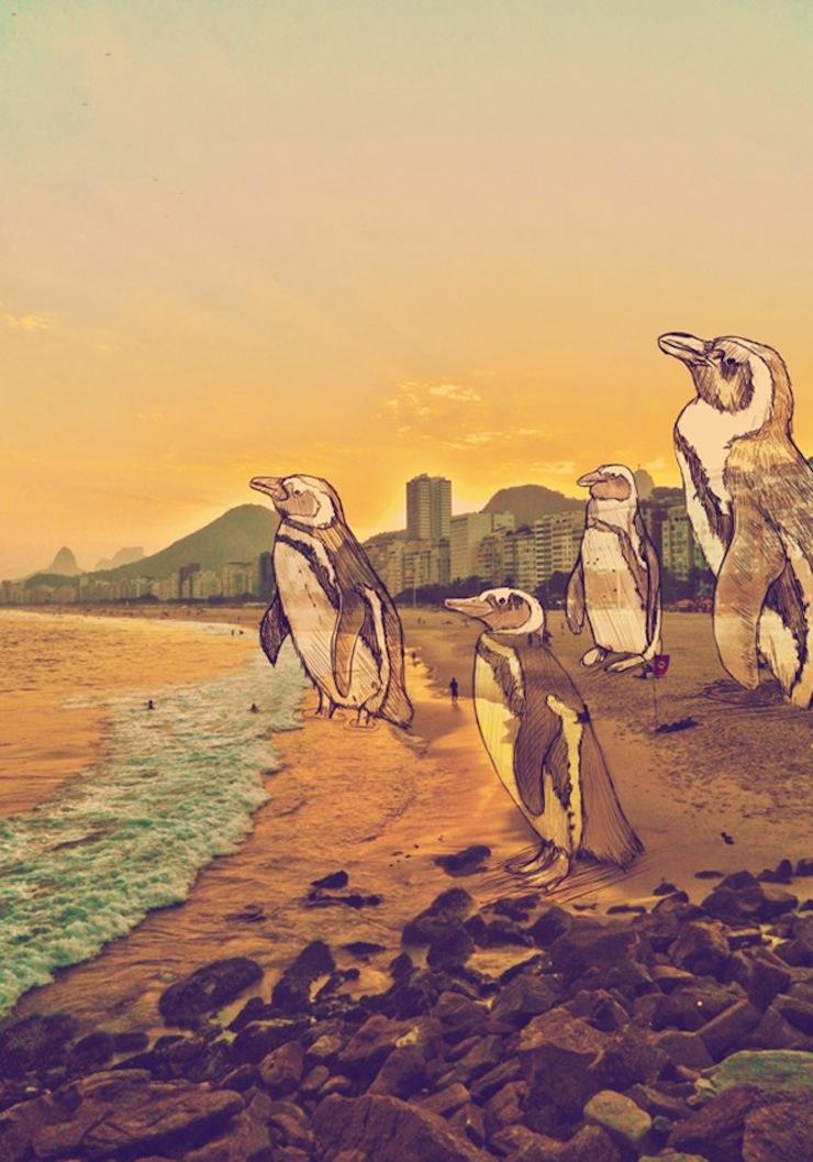 fotografias-ilustracoes-cidade-maravilhosa-rio-de-janeiro-continua-lindo-pinguinos  Fotografias, Ilustrações e a Cidade Maravilhosa: o Rio de Janeiro continua lindo!  fotografias ilustracoes cidade maravilhosa rio de janeiro continua lindo pinguinos