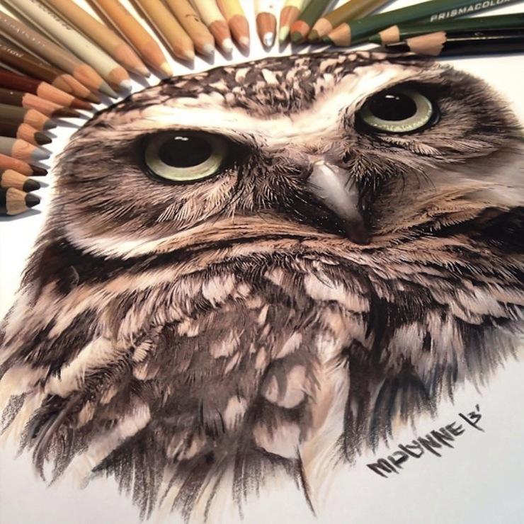 hiper-realismo-arte-com-lapis-de-cor-marcadores-e-tinta-3  Hiper-realismo: arte das boas com lápis de cor, marcadores e tinta hiper realismo arte com lapis de cor marcadores e tinta 3