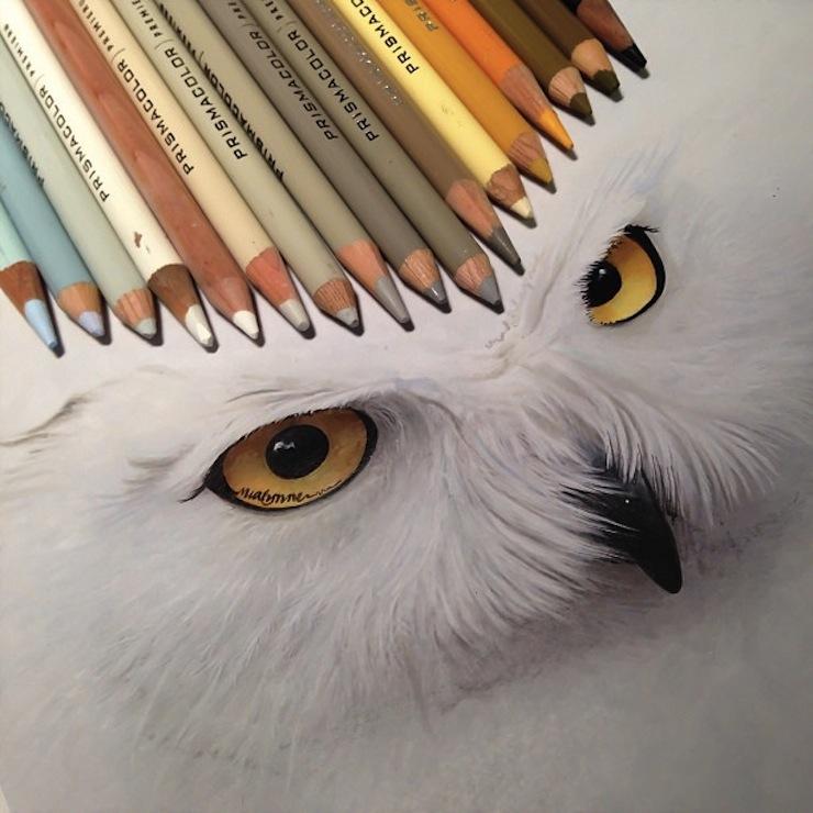 hiper-realismo-arte-com-lapis-de-cor-marcadores-e-tinta-6  Hiper-realismo: arte das boas com lápis de cor, marcadores e tinta hiper realismo arte com lapis de cor marcadores e tinta 6