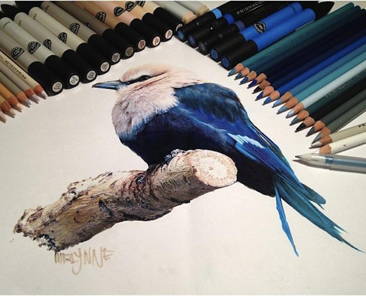 hiper-realismo-arte-com-lapis-de-cor-marcadores-e-tinta-7  Hiper-realismo: arte das boas com lápis de cor, marcadores e tinta hiper realismo arte com lapis de cor marcadores e tinta 7
