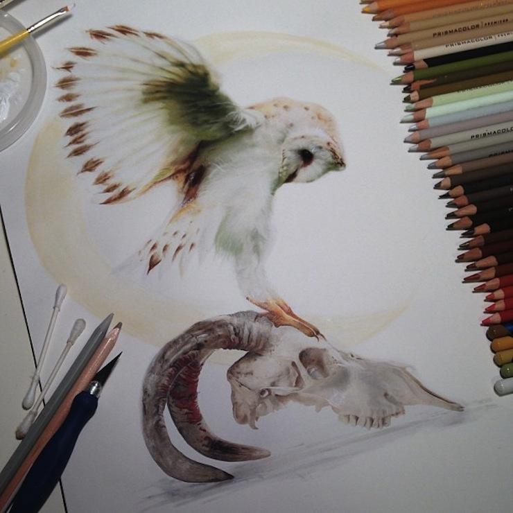 hiper-realismo-arte-com-lapis-de-cor-marcadores-e-tinta-9  Hiper-realismo: arte das boas com lápis de cor, marcadores e tinta hiper realismo arte com lapis de cor marcadores e tinta 9