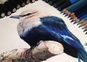 hiper-realismo-arte-com-lapis-de-cor-marcadores-e-tinta-cover