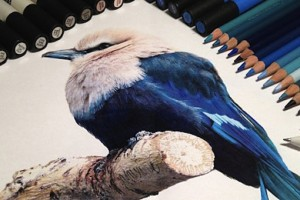 Hiper-realismo: arte das boas com lápis de cor, marcadores e tinta