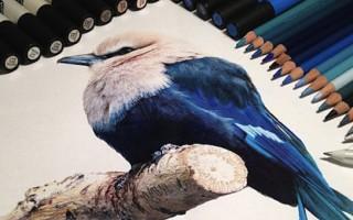hiper-realismo-arte-com-lapis-de-cor-marcadores-e-tinta-cover  Hiper-realismo: arte das boas com lápis de cor, marcadores e tinta hiper realismo arte com lapis de cor marcadores e tinta cover 320x200